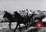 Image of German farmers Wiesbaden Germany, 1954, second 2 stock footage video 65675031796