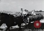 Image of German farmers Wiesbaden Germany, 1954, second 3 stock footage video 65675031796