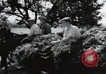 Image of German farmers Wiesbaden Germany, 1954, second 9 stock footage video 65675031796