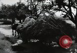 Image of German farmers Wiesbaden Germany, 1954, second 12 stock footage video 65675031796