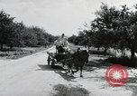 Image of German farmers Wiesbaden Germany, 1954, second 6 stock footage video 65675031797