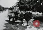 Image of German farmers Wiesbaden Germany, 1954, second 10 stock footage video 65675031797