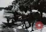 Image of German farmers Wiesbaden Germany, 1954, second 11 stock footage video 65675031797