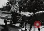 Image of German farmers Wiesbaden Germany, 1954, second 12 stock footage video 65675031797