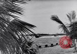 Image of American Sailors Florida United States USA, 1941, second 10 stock footage video 65675031867