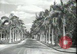 Image of car on a road Miami Florida USA, 1936, second 9 stock footage video 65675031913