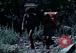 Image of national parks California United States USA, 1970, second 8 stock footage video 65675031948