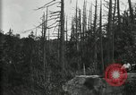 Image of group camping Maryland United States USA, 1921, second 6 stock footage video 65675032000