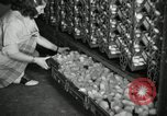 Image of chicken hatched New Brunswick New Jersey USA, 1941, second 5 stock footage video 65675032025
