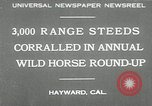Image of annual wild horse round up Hayward California USA, 1930, second 1 stock footage video 65675032154