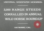 Image of annual wild horse round up Hayward California USA, 1930, second 2 stock footage video 65675032154
