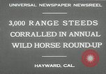 Image of annual wild horse round up Hayward California USA, 1930, second 6 stock footage video 65675032154