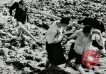 Image of Rice Paddy China, 1954, second 5 stock footage video 65675032179