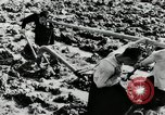 Image of Rice Paddy China, 1954, second 9 stock footage video 65675032179