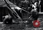 Image of female soldiers Korea, 1954, second 10 stock footage video 65675032215