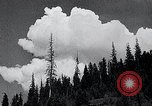 Image of lumbering United States USA, 1937, second 3 stock footage video 65675032221