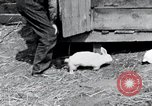 Image of people in rural area United States USA, 1935, second 9 stock footage video 65675032230