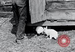 Image of people in rural area United States USA, 1935, second 12 stock footage video 65675032230