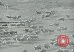 Image of drought United States USA, 1936, second 8 stock footage video 65675032594