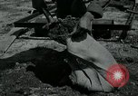Image of 155 mm Howitzer Seoul Korea, 1951, second 2 stock footage video 65675032645
