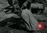 Image of 155 mm Howitzer Seoul Korea, 1951, second 3 stock footage video 65675032645