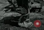 Image of 155 mm Howitzer Seoul Korea, 1951, second 4 stock footage video 65675032645