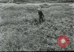 Image of scope instrument model BC200 Vietnam, 1962, second 7 stock footage video 65675032659