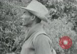 Image of Vietcong points 45 caliber automatic pistol Vietnam, 1965, second 5 stock footage video 65675032696