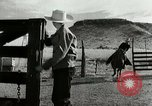 Image of cowboy activities United States USA, 1943, second 11 stock footage video 65675032776