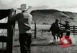 Image of cowboy activities United States USA, 1943, second 12 stock footage video 65675032776
