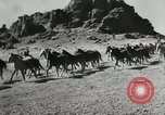 Image of cowboy activities United States USA, 1943, second 3 stock footage video 65675032777