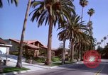 Image of Palm tree lined street in neighborhood Los Angeles California USA, 1976, second 7 stock footage video 65675033263