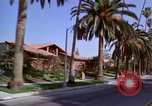 Image of Palm tree lined street in neighborhood Los Angeles California USA, 1976, second 8 stock footage video 65675033263
