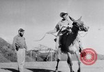 Image of Ernesto Che Guevara Cuba, 1960, second 9 stock footage video 65675033306