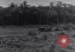 Image of 1st Cavalry Division New Guinea, 1944, second 8 stock footage video 65675033417