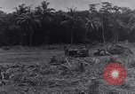Image of 1st Cavalry Division New Guinea, 1944, second 9 stock footage video 65675033417