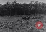 Image of 1st Cavalry Division New Guinea, 1944, second 10 stock footage video 65675033417