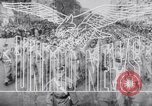 Image of Allied Army Italy, 1944, second 10 stock footage video 65675033481