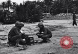 Image of Pigeon messengers Tunisia North Africa, 1943, second 5 stock footage video 65675033484