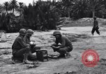 Image of Pigeon messengers Tunisia North Africa, 1943, second 6 stock footage video 65675033484