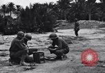 Image of Pigeon messengers Tunisia North Africa, 1943, second 10 stock footage video 65675033484