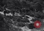 Image of Allied Forces Tunisia North Africa, 1943, second 3 stock footage video 65675033514