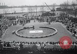Image of Ringling Brothers Barnum-Bailey Circus New York United States USA, 1965, second 6 stock footage video 65675033536