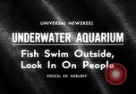 Image of underwater aquarium Oak Bay British Columbia Canada, 1965, second 3 stock footage video 65675033537