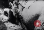 Image of Indian elephants Burma, 1944, second 10 stock footage video 65675033570