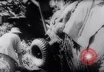 Image of Indian elephants Burma, 1944, second 12 stock footage video 65675033570