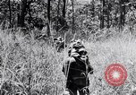 Image of Chindits in operation during World War II Burma, 1944, second 10 stock footage video 65675033607
