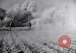 Image of Japanese aggression in China Nanking China, 1944, second 3 stock footage video 65675033613