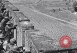 Image of Japanese aggression in China Nanking China, 1944, second 7 stock footage video 65675033613