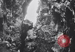 Image of birds and rock formation Clipperton Island, 1943, second 3 stock footage video 65675033679